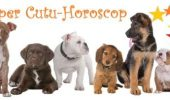 Horoscop ….CANIN!