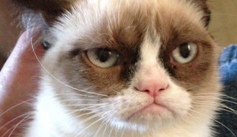 Grumpy-Cat-Tadar-Sauce