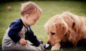 Sfatul psihologului: Copilul tau are nevoie de un animal de companie! Afla de ce!
