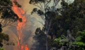 Tasmania Bushfires, Australia - 04 Jan 2013