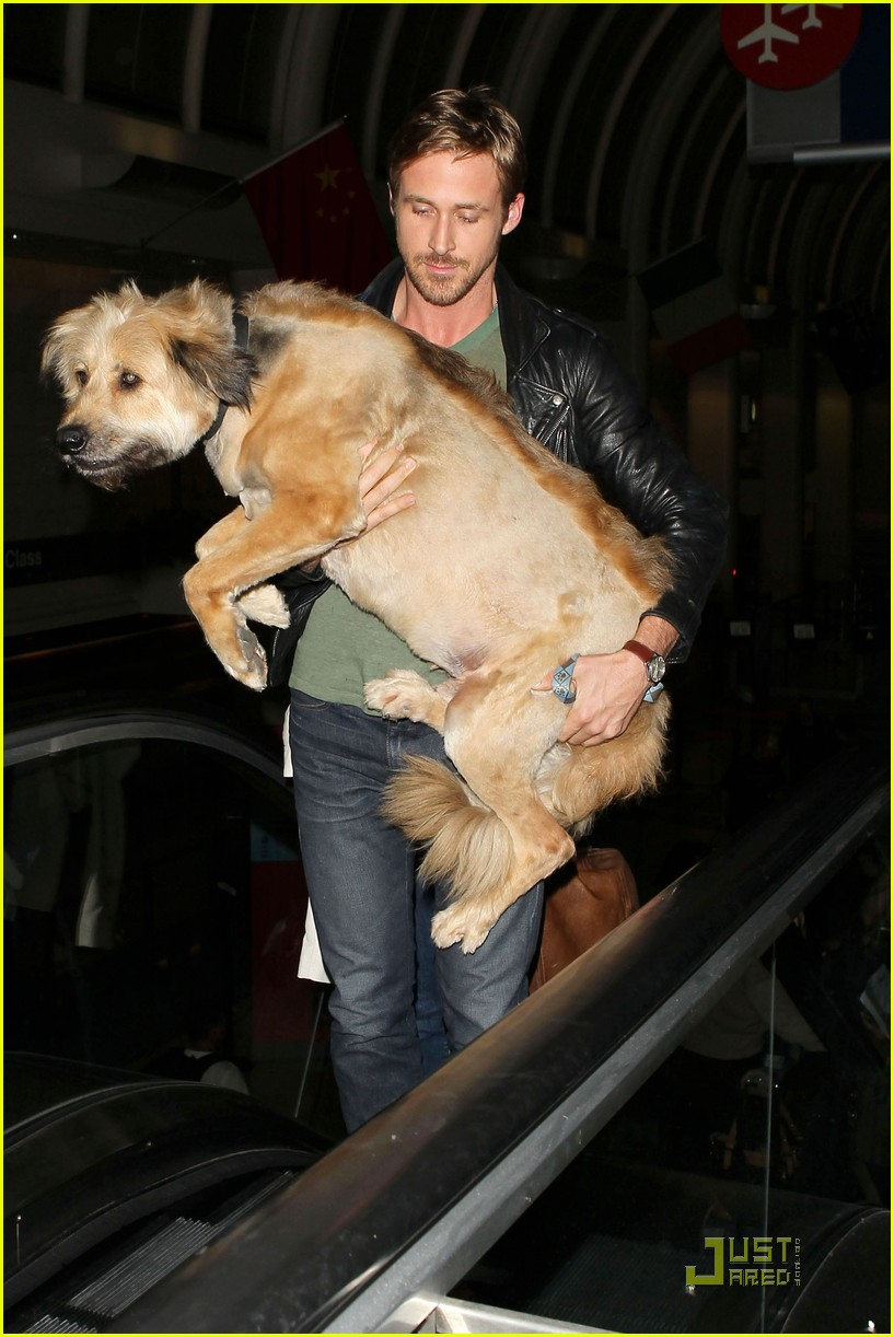 Ryan Gosling catches a flight out of LAX with George