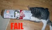 cat_fail_6