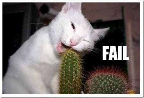 cat_fail_7