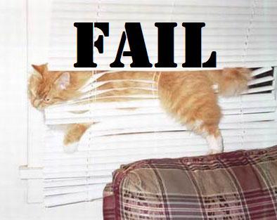 cat_fail_8