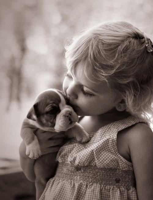 Pana la urma, e OK sa-ti pupi animalul de companie sau nu?