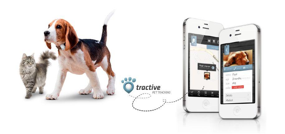 Smartphone-urile vin în ajutorul animalelor de companie. Fiţi atenţi ce pot face!