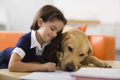 article-new_ehow_images_a08_b6_b7_teach-children-empathy-animals-800x8001