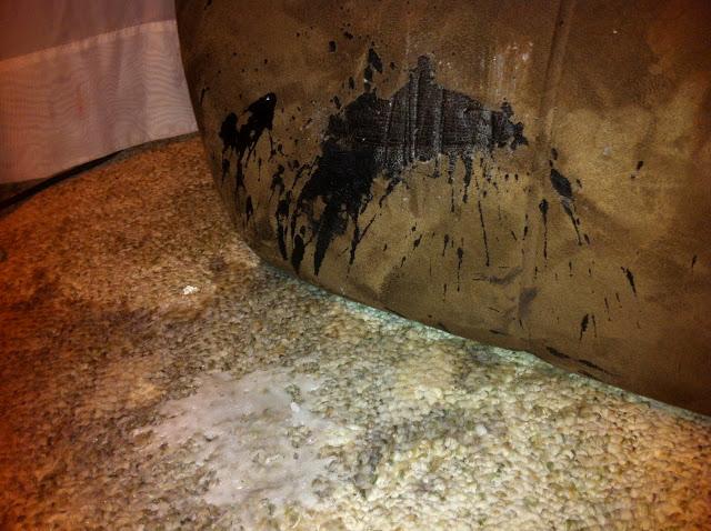 """""""A rupt perdeaua, a spart o vaza, a dat patura jos de pe pat… A facut camera sa arate ca dupa un jaf!"""""""