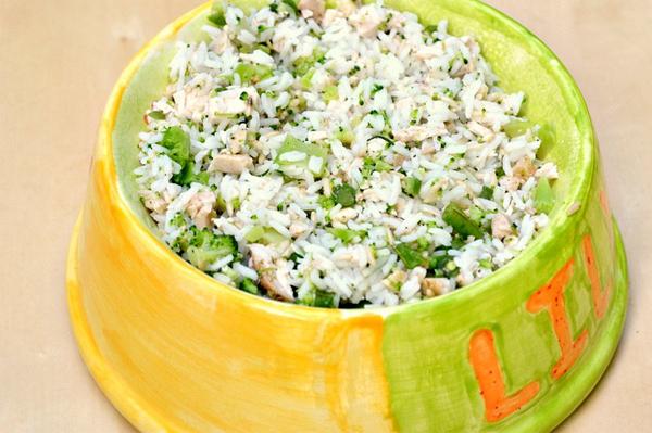 homemade-healthy-dog-food-recipe-main
