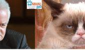 Asemanari intre vedete si animale – VARIANTA ROMANEASCA | Mori de ras!!!
