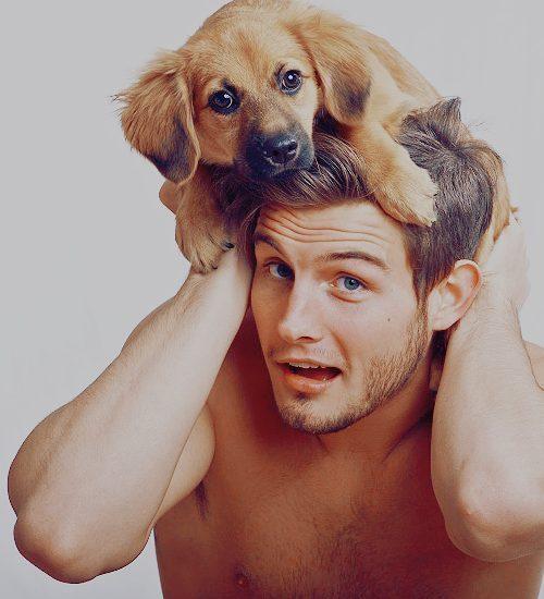 cute-dog-man-sexy-sexy-and-cute-Favim.com-206292_large