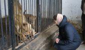 Ranita de leoaica! O adolescenta a fost atacata la Zoo Radauti!