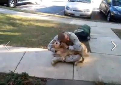 Cainele a inceput sa planga cand l-a vazut din nou acasa! Un video emotionant!