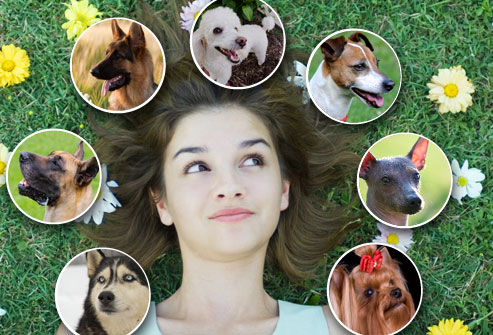 webmd_rf_photo_of_woman_and_dogs