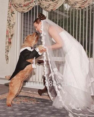 Ei sunt oamenii care s-au căsătorit cu animale!