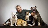 """""""Vrajitorul de caini"""", Cesar Millan, anchetat pentru presupusa cruzime fata de animale"""