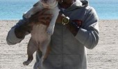 Chris Brown_Mystery Boo_Dog