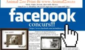 facebook_concurs animal zoo