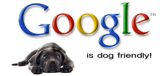 google-is-dog-friendly
