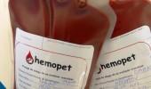 hemopet2