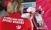 Prima bancă de sânge din România pentru animalele de companie