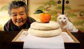 O poveste spusa in imagini: Viata unei batrane din Japonia, alaturi de pisica ei ceacara
