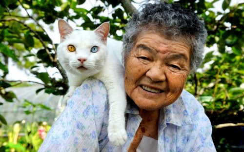 woman-and-cat_2407644k