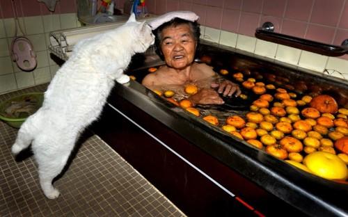 woman-cat-bath_2407642k