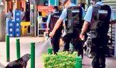 Ce monstri!!! Politistii turci au dat cu spray lacrimogen pe caini!