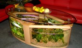 AqaVim_oval_coffee_table_aquarium_3