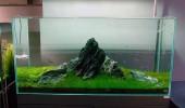 Seamount-Aquarium-Hardscape-Design