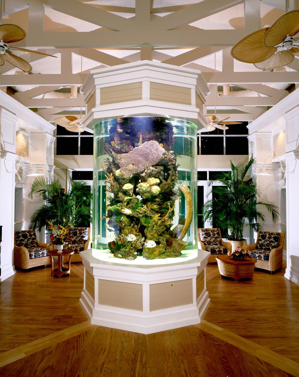 aquarium-company-that-designs-service-supplies-aquariums-and