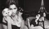Unul dintre cei mai celebri oameni din lume vrea să se însoare cu ea… CU PISICA!!! FOTO + VIDEO