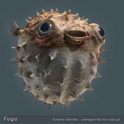 Fugu, cel mai periculos peste comestibil