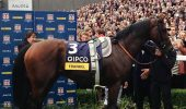 Frankel,_Champions_Stakes