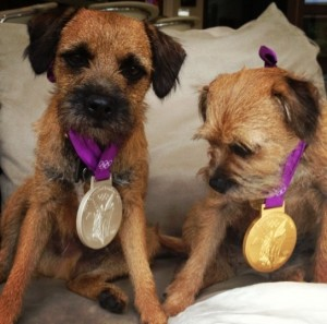 andy-murray-dogs-medals