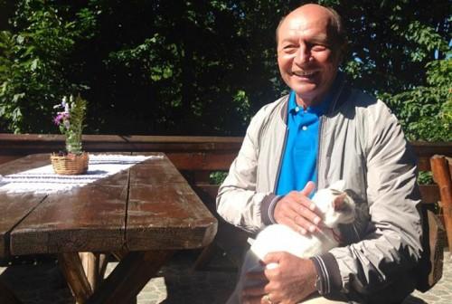 Preşedintele Traian Băsescu s-a pozat cu o pisică doar pentru imagine? Află de la noi adevărul!