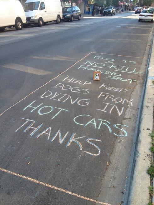hotcars2