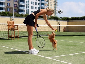maria-sharapova-dog-Dolce