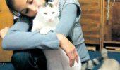 "Motanul Lucky,""medic veterinar""! | GALERIE FOTO"