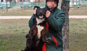SONDAJ IRES. 72% dintre bucureșteni susțin eutanasierea câinilor vagabonzi. TU CE PĂRERE AI?