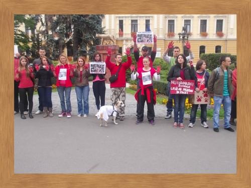 Străinii veniţi la RMA au plâns la protestul de la Braşov