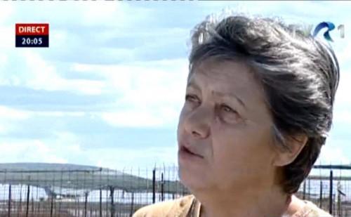 """""""MAMA"""" MAIDANEZILOR. O femeie a adoptat 171 de câini vagabonzi şi i-a abandonat în stradă. """"Primăria este de vină!"""""""