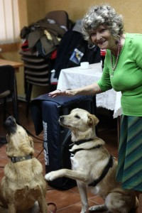 Câinii maidanezi au ajuns animale de terapie