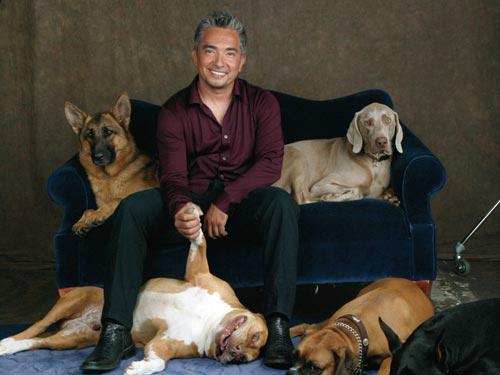 Cesar-Millan-the-dog-whisperer-25204425-500-375