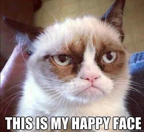 Grumpy-Cat-Purina
