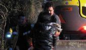 Operațiune amplă de salvare, pentru un CÂINE BLOCat în casa unei vulpi