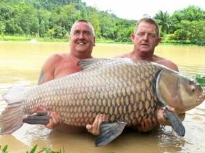 Un pescar a dat marea lovitură după ce a capturat un pește gigant