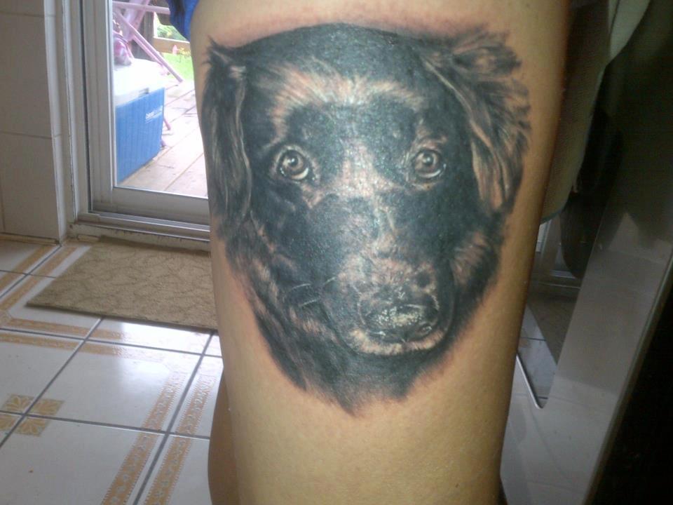 tatuaje caini (10)