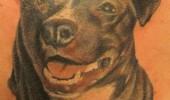 tatuaje caini (17)